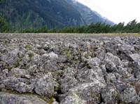 rocks aligned