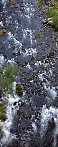 rocky Green River