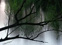 1971 05 01 Longview tree 01