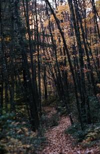 1973 10 27 Shenandoah trail 01