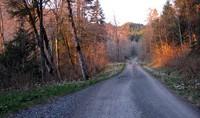 tiger mtn road