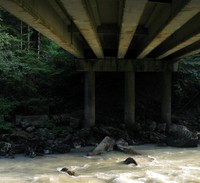 under a North Nooksack River bridge