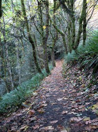 upper twin falls trail