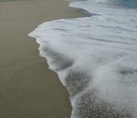 water at scott creek beach